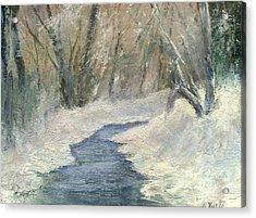 Winter On Stormcreek Acrylic Print by Gail Kirtz