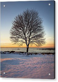 Winter On The Coast Acrylic Print by Eric Gendron