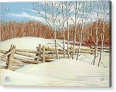 Winter Poplars 2 Acrylic Print by Richard De Wolfe