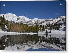 Winter Refelctions Acrylic Print by Mark Smith