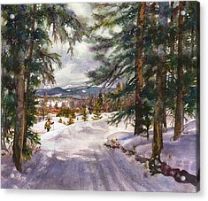 Winter Solace Acrylic Print by Anne Gifford