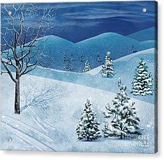 Winter Solstice Acrylic Print by Bedros Awak