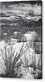 Winter Spice In Monochrome Acrylic Print by Royce Howland
