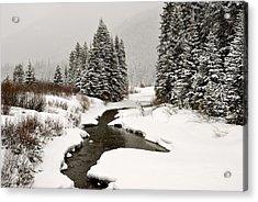 Winter Stream Acrylic Print by Frank Remar