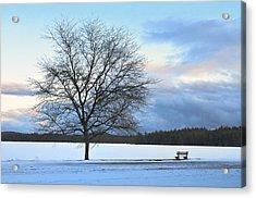 Winter Acrylic Print by Toshihide Takekoshi