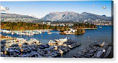 Winter Vancouver Acrylic Print by Alexis Birkill