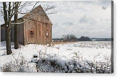 Winter Warmth Acrylic Print by Bill Wakeley