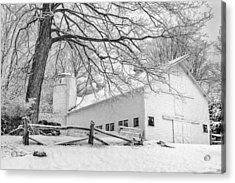 Winter White  Bw Acrylic Print by Bill Wakeley