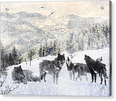 Winter Wolves Acrylic Print by Lourry Legarde