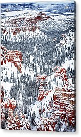 Winter Wonder Acrylic Print by James Marvin Phelps