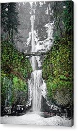 Winter Wonderland Acrylic Print by Jon Burch Photography