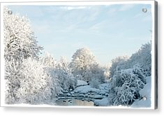Winter Wonderland Acrylic Print by Mark Denham