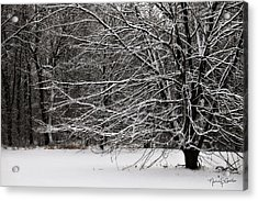 Winter Wonderland Acrylic Print by Nancy  Coelho