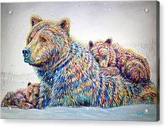 Winter Wonderland Acrylic Print by Teshia Art