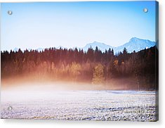 Winter Wood With Fog Acrylic Print by Silvia Ganora