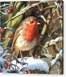 Winters Friend Acrylic Print by David Price
