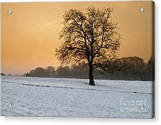 Winters Morning Acrylic Print by Stephen Smith