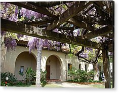 Wisteria Arbor Acrylic Print by Carolyn Donnell
