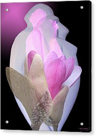 Within Love Acrylic Print by Torie Tiffany