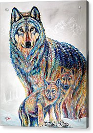 Wolf Pack Acrylic Print by Teshia Art
