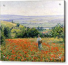 Woman In A Poppy Field Acrylic Print by Leon Giran Max