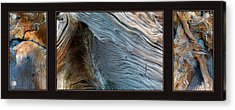 Wood Triptych Acrylic Print by Leland D Howard