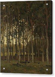 Woodland Scene Acrylic Print by Theophile de Bock