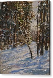 Woods And Snow At Two Below Acrylic Print by Jack Skinner