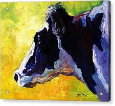 Working Girl - Holstein Cow Acrylic Print by Marion Rose