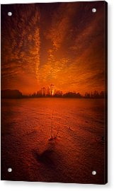 World Without End Acrylic Print by Phil Koch