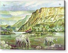 Ws2000dc023 Landscape Bolivia 18x12 Acrylic Print by Alfredo Da Silva