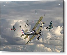 Ww1 - 'wings' Acrylic Print by Pat Speirs