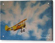 Yellow Airplane Acrylic Print by Jindra Noewi