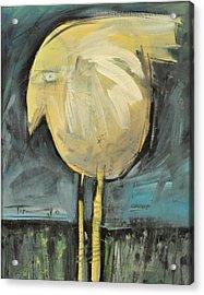 Yellow Bird In Field Acrylic Print by Tim Nyberg