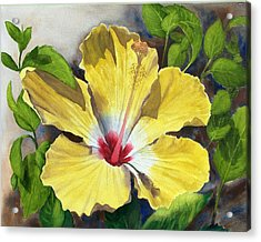 Yellow Hibiscus Acrylic Print by Robert Thomaston