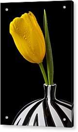 Yellow Tulip In Striped Vase Acrylic Print by Garry Gay
