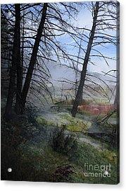 Yellowstone National Park 4 Acrylic Print by Xueling Zou