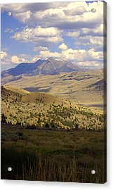 Yellowstone View Acrylic Print by Marty Koch
