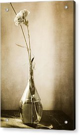 Yesterday Acrylic Print by Lisa McStamp