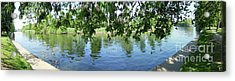 York River Ouse Acrylic Print by Neil Finnemore