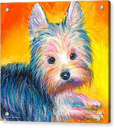 Yorkie Puppy Painting Print Acrylic Print by Svetlana Novikova