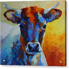 Young Blood - Longhorn Acrylic Print by Marion Rose