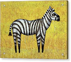 Zebra Acrylic Print by Kelly Jade King