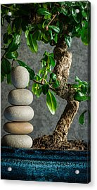 Zen Stones And Bonsai Tree II Acrylic Print by Marco Oliveira