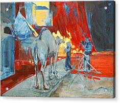 Zohan Camel Acrylic Print by Amy Bernays