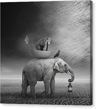 ... .. Canvas Print by Beata Bieniak