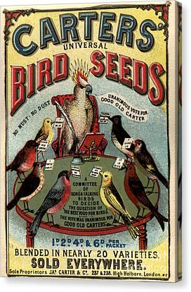 1890s Uk Carters Bird Seed Birds Canvas Print by The Advertising Archives