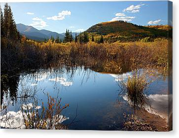 A Reflection Of Fall Canvas Print by Jim Garrison