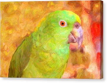 Amazon Parrot Canvas Print by Gravityx9 Designs