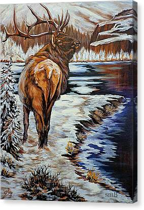 Colorado Winter Canvas Print by Susan Bergstrom